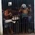 URGENTE: Rebelião na Cadeia Pública do município de Santa Quitéria