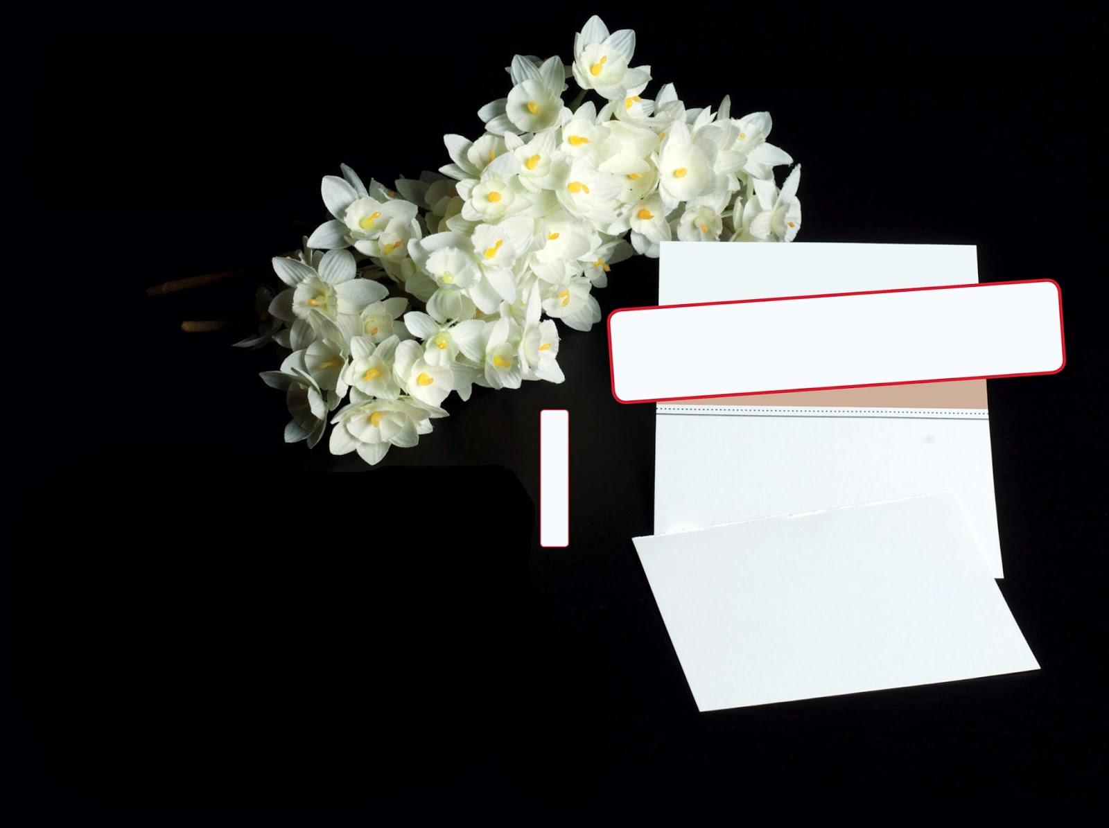 Photos Bank غلاف رومنسي Romance Cover