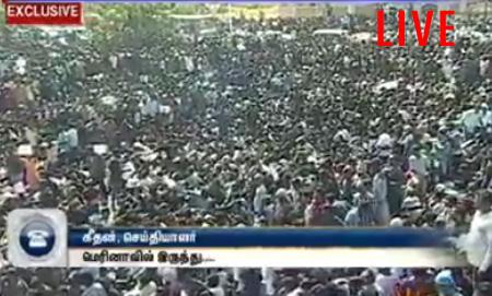 LIVE – Jallikattu – Thanthi TV Live