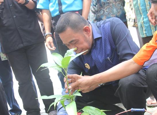 Wakil Bupati, Tanam Pohon Perdana, Baksos RSR 2017