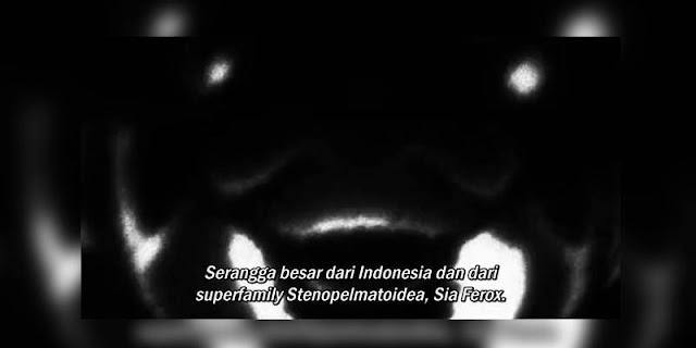 Unsur Indonesia yang terdapat pada anime Terra Formars