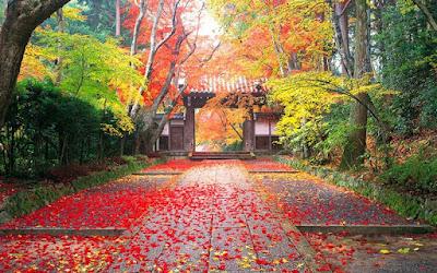 Osaka di musim gugur