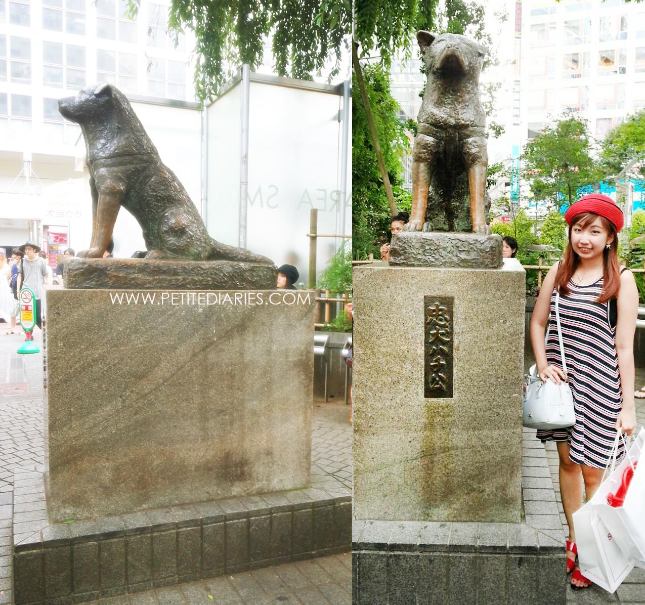 shibuya traveling