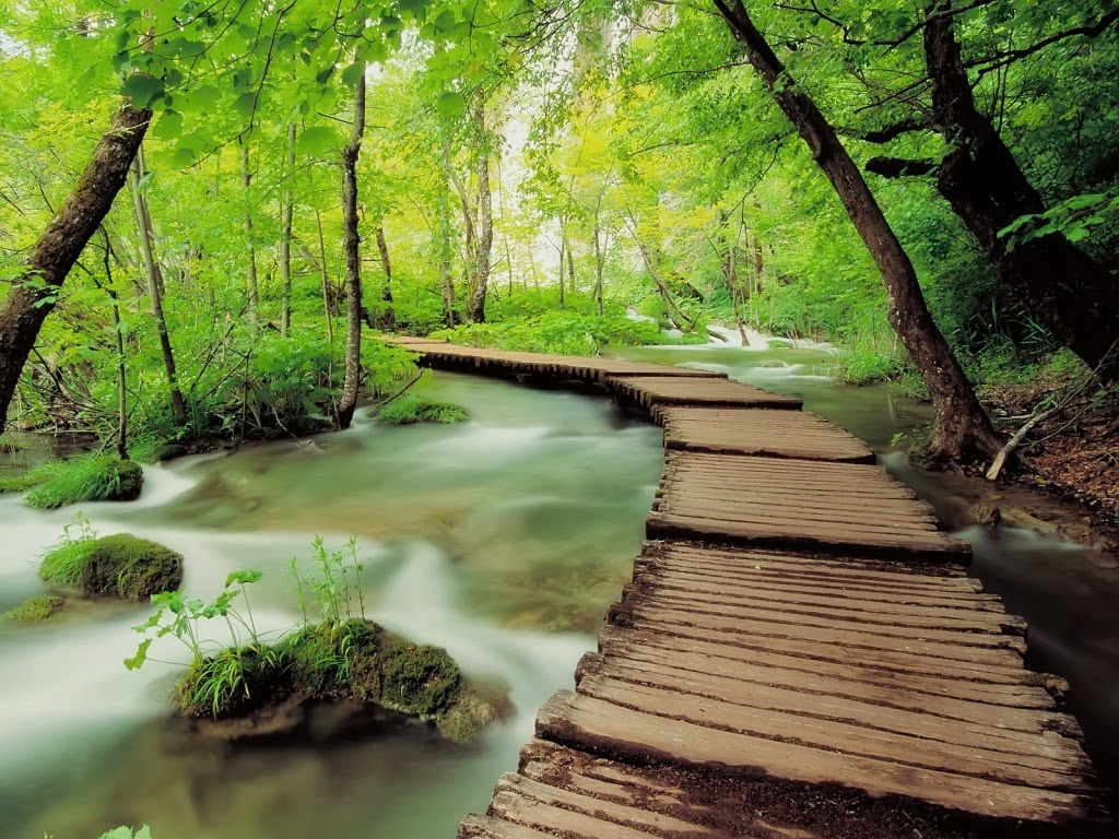 Beautiful Nature Wallpapers For Desktop HD Wallpapers