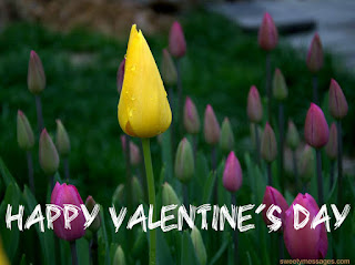 valentines day images,