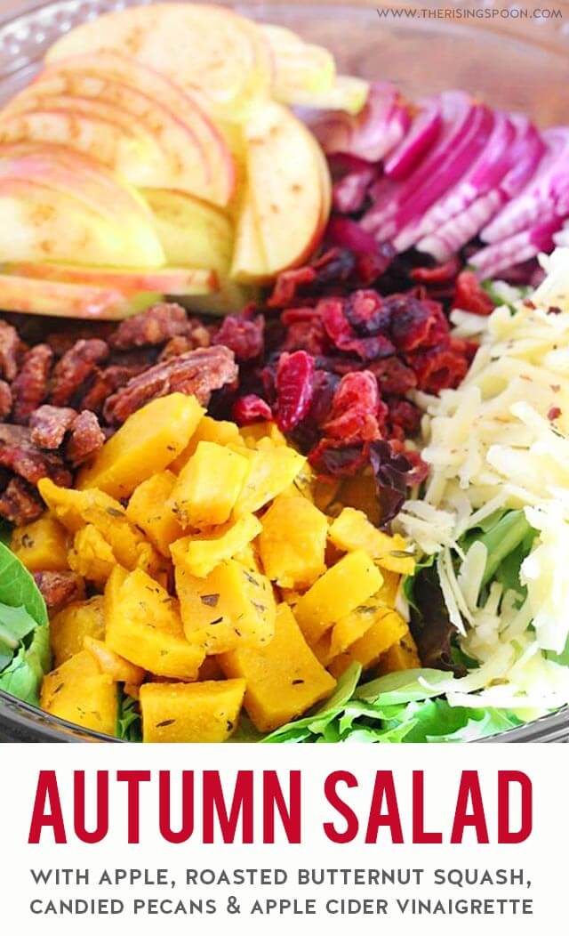 A healthy & gorgeous autumn salad featuring vibrant seasonal ingredients like roasted butternut squash, cranberries, apple, baby greens & candied pecans all tossed in a tangy apple cider vinaigrette. Bring this to all your fall gatherings (plusThanksgiving & Christmas celebrations) to wow your friends & family! (gluten-free, grain-free & vegetarian)