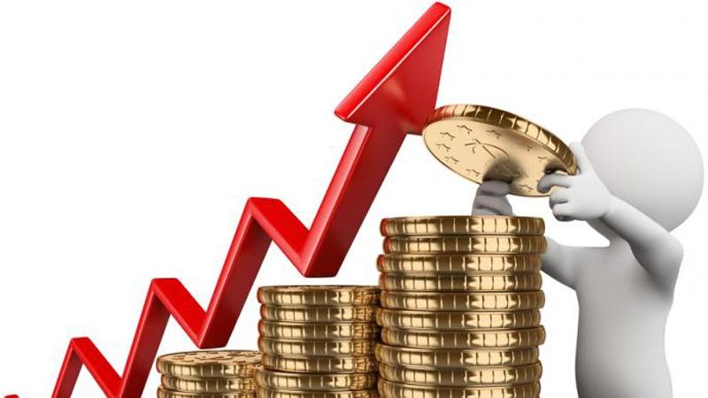 Fungsi Manajemen Investasi dan Pengertian Manajemen Investasi