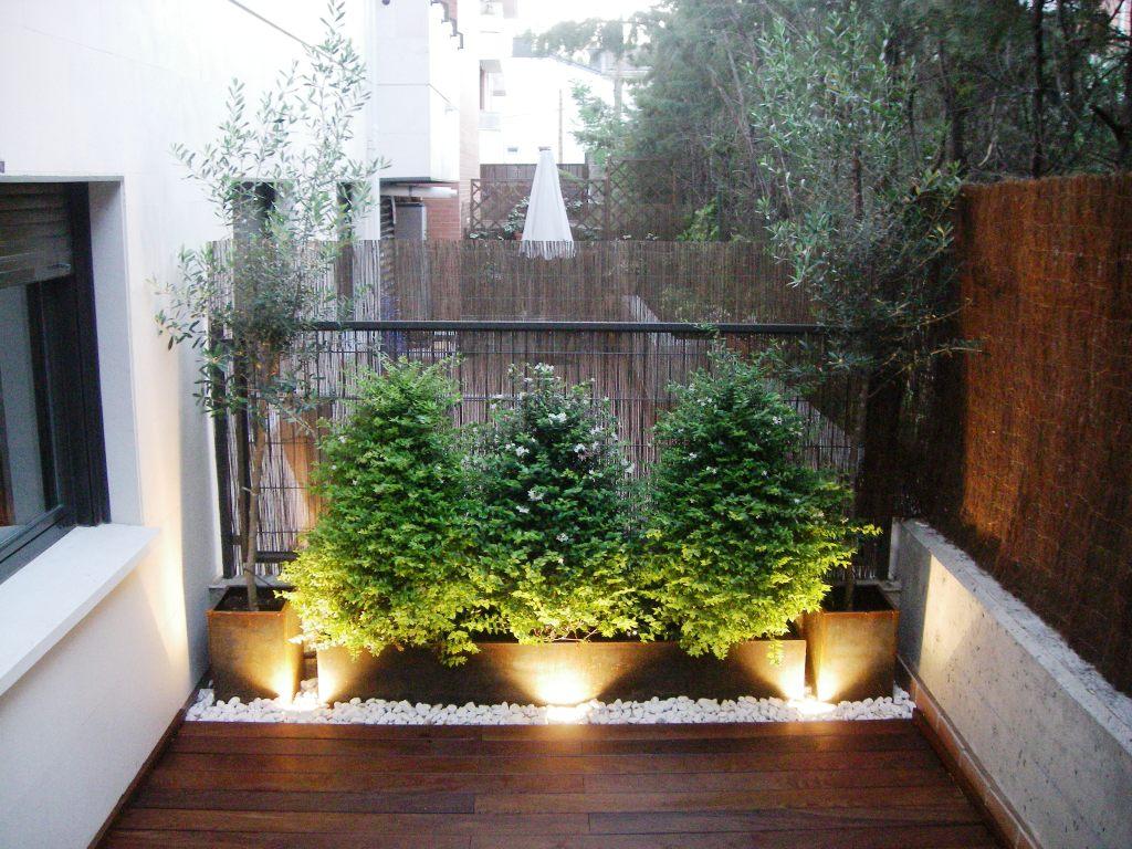 Jard n en una terraza o azotea guia de jardin for Decoracion de patios con piedras y plantas