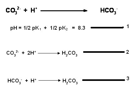 Chemistry Laboratory Titration of carbonate ions with a strong acid - titrations