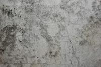 Dirty Plaster 8018