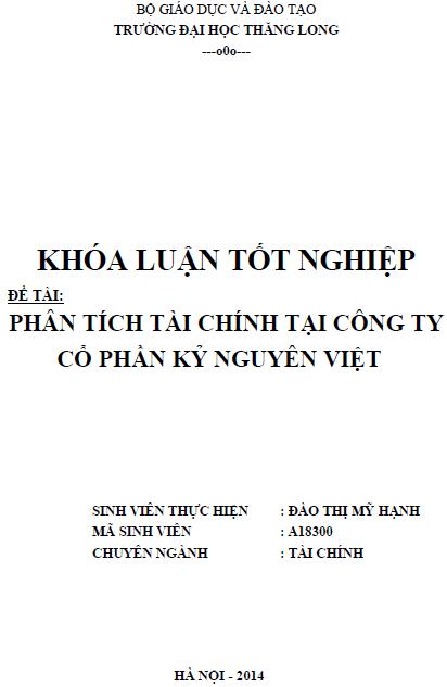 Phân tích tình hình tài chính tại Công ty Cổ phần kỷ Nguyên Việt