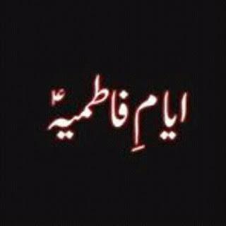 shiaofpakistan.blogspot.com