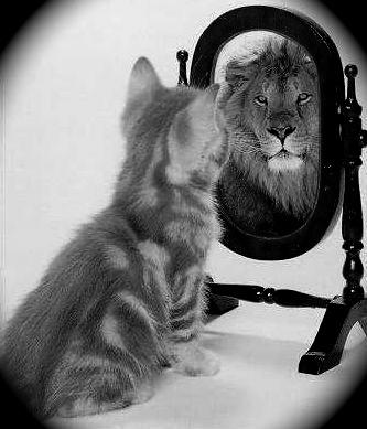 Il percorso profondissimo la legge dello specchio - Cosa significa quando si rompe uno specchio ...