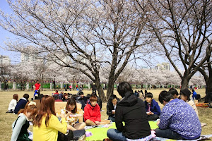 People Enjoy Spring