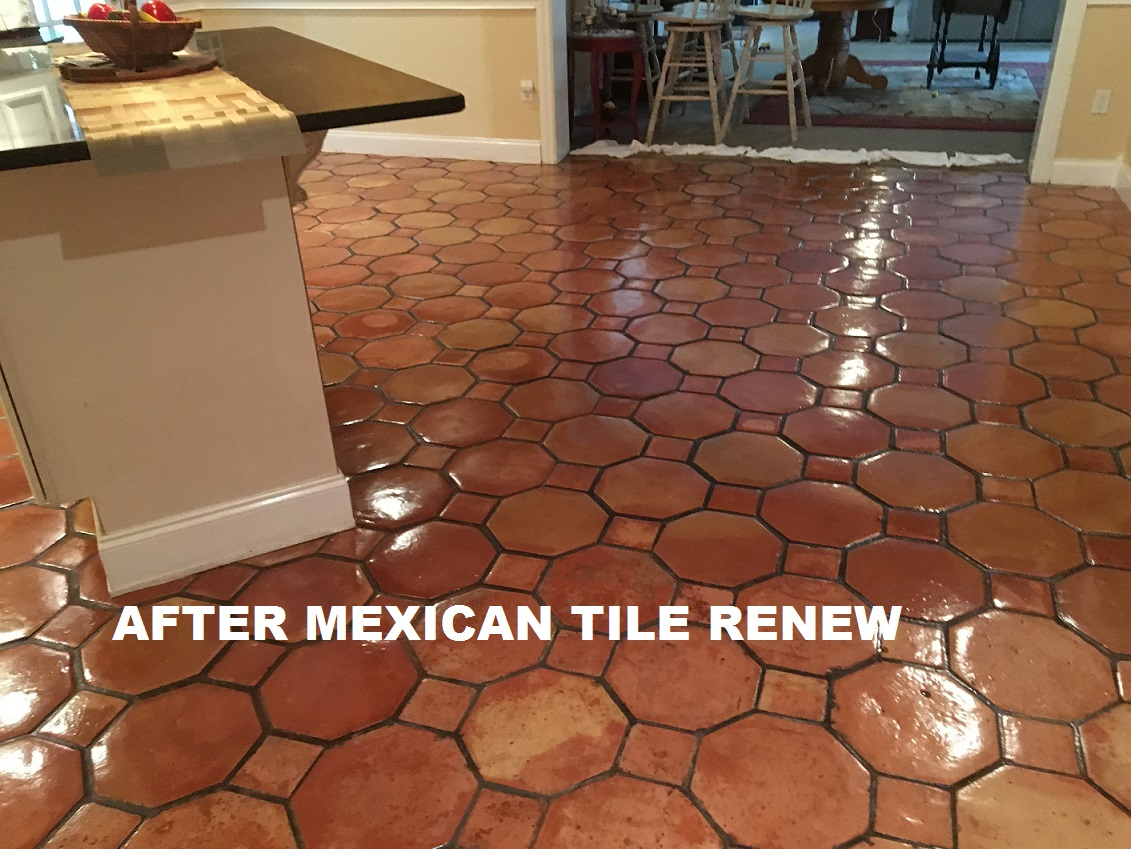 Mexican tile renew sarasota fl cleaning sealing mexican tile mexican tile renew project on tile floor in nokomis fl that had not been resurfaced in 20 years the small brown squares are not supposed to be brown dailygadgetfo Image collections