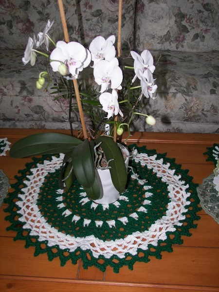Eye of the Emerald, gifting, doily, mandala, coasters, crochet, finished project, phalaenopsis