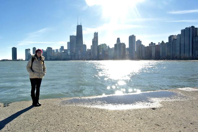 chicago skyline north avenue beach lake michigan