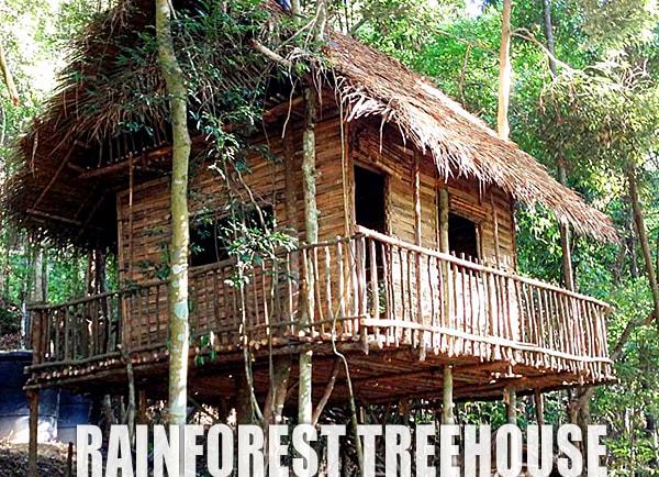 Johor Rainforest Treehouse