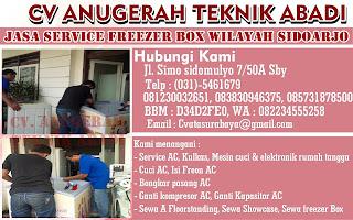 Jasa Service Freezer Box Wiayah Sidoarjo