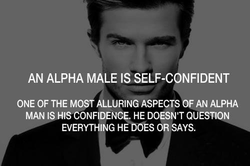 Sunny Ani's Blog: Alpha males vs Alpha females
