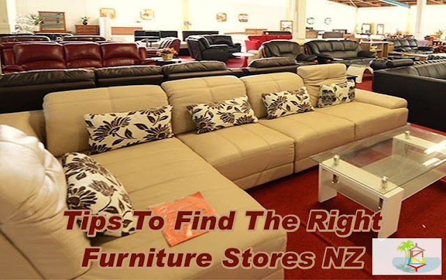 furniture stores NZ