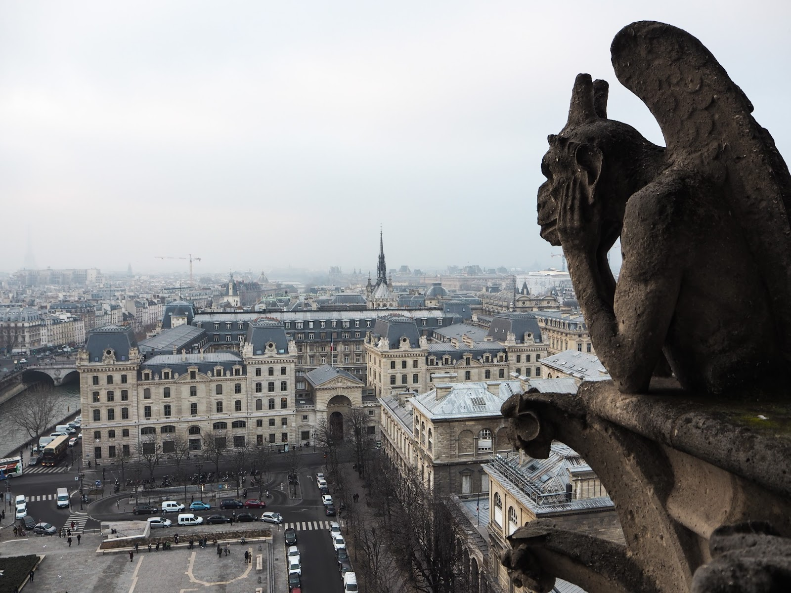 Paris City Guide - What to See - Notre Dame Skyline