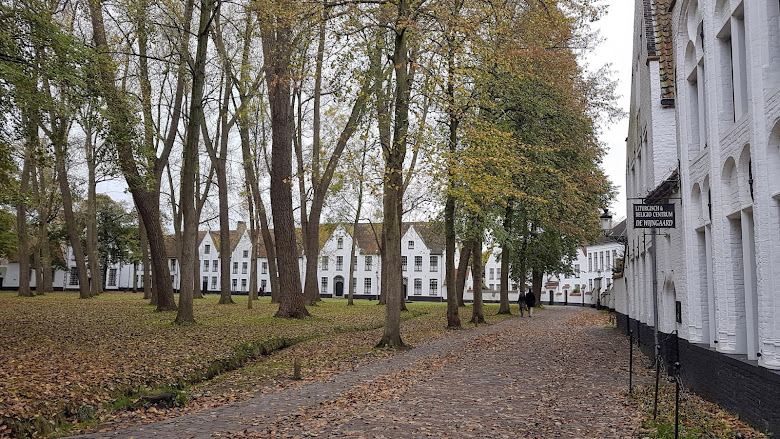 貝居安會院 (Prinselijk Begijnhof Ten Wijngaerde)
