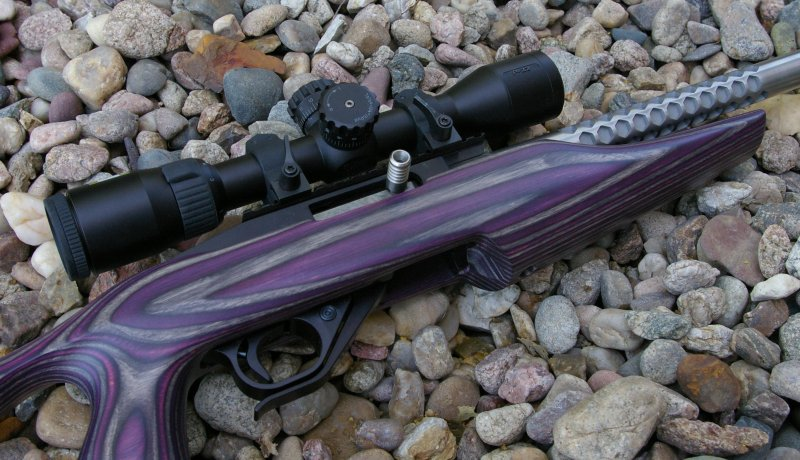 Royal Purple Oil Review >> Boyd 10/22 SS Evolution TactiCool Stock Review