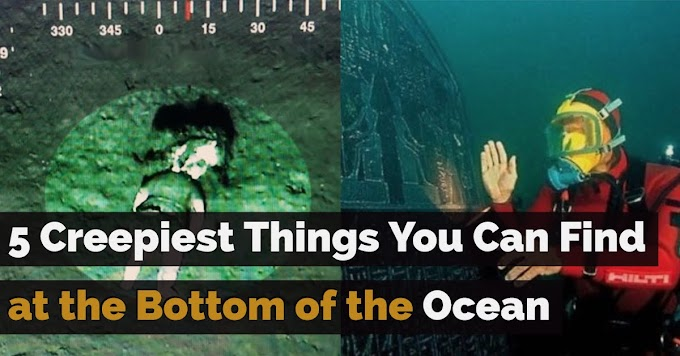 5 Creepiest Things You Can Find at the Bottom of the Ocean