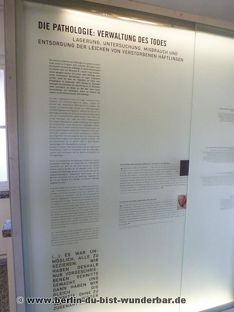 oranienburg, sachsenhausen, konzentrationslager, kz, haeftlinge, krematorien, tod, massenmord, medizinische experimenten