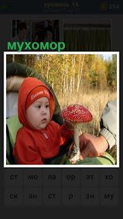 ребенок в коляске, которому показывают гриб мухомор