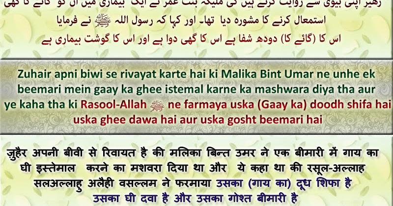 Only-Quran-Hadith: Hadith: Gaay (Cow) ka doodh shifa hai