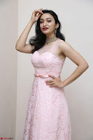 Sakshi Kakkar in beautiful light pink gown at Idem Deyyam music launch ~ Celebrities Exclusive Galleries 010.JPG