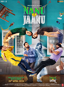 Nanu Ki Jaanu (2018) DVD Rip Watch Online Free