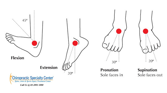 Normal finings of a healthy ankle