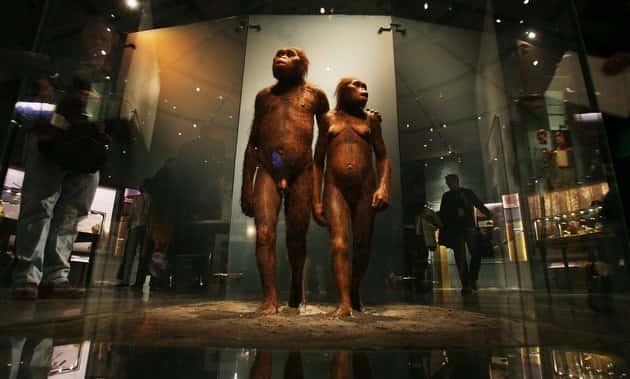 Τι Αποδεικνύουν Ευρήματα Ηλικίας 2,4 εκατ. Χρόνων για την Καταγωγή του Ανθρώπου