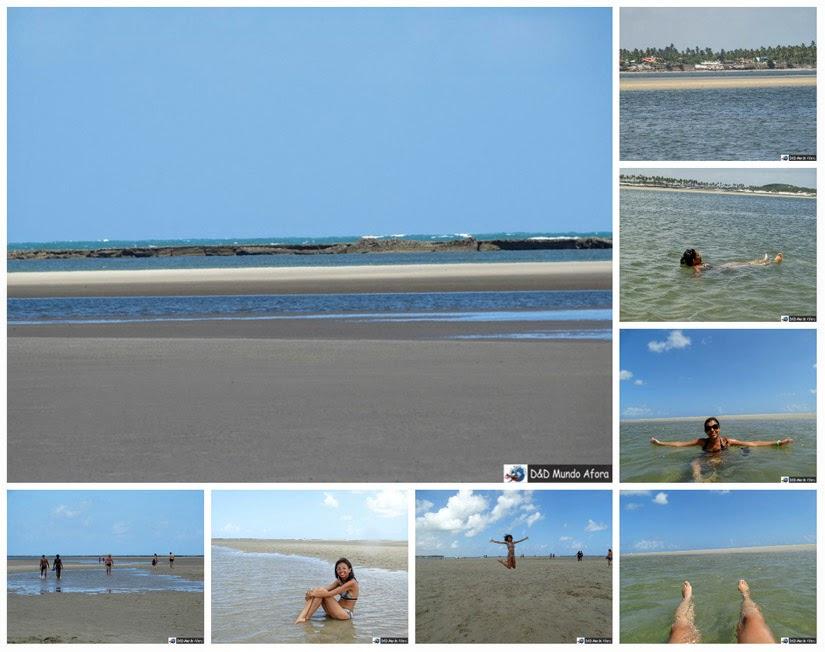 Banco de areia - o que fazer na Praia de Carneiros (Pernambuco)