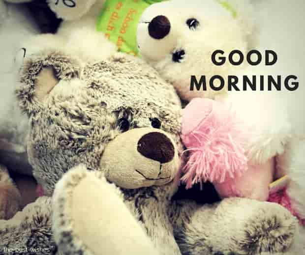 good morning images for teddy bear