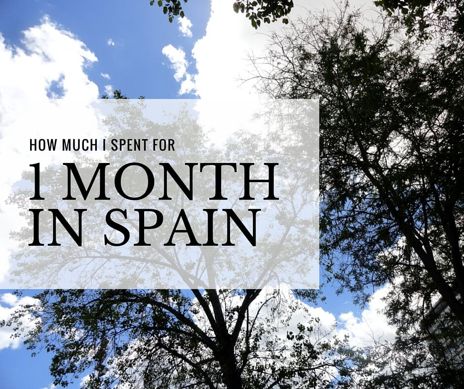 how much I spent for one month in spain