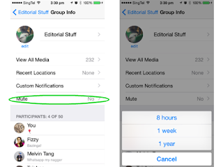 0 0 600 0 70  Features mutey%2Bmute - 12 WhatsApp Tricks you should start using today