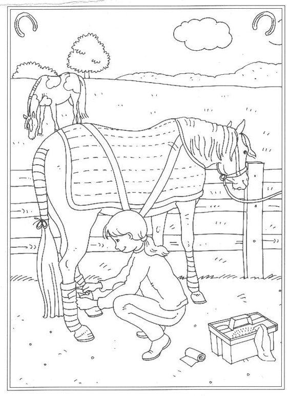 Tranh tô màu bé chăm sóc con ngựa