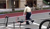 Nhật Bản: Nhường đường cho...vịt