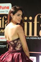 Pragya Jaiswal Sizzles in a Shantanu Nikhil Designed Gown  Exclusive 008.JPG