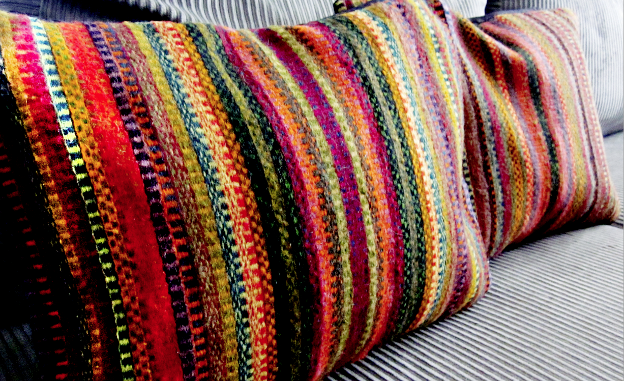 Cole Barnett Ethnic Mexican Pillows And Rugs Native