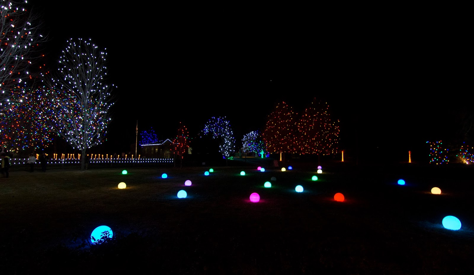12 16 16 Hudson Gardens Christmas