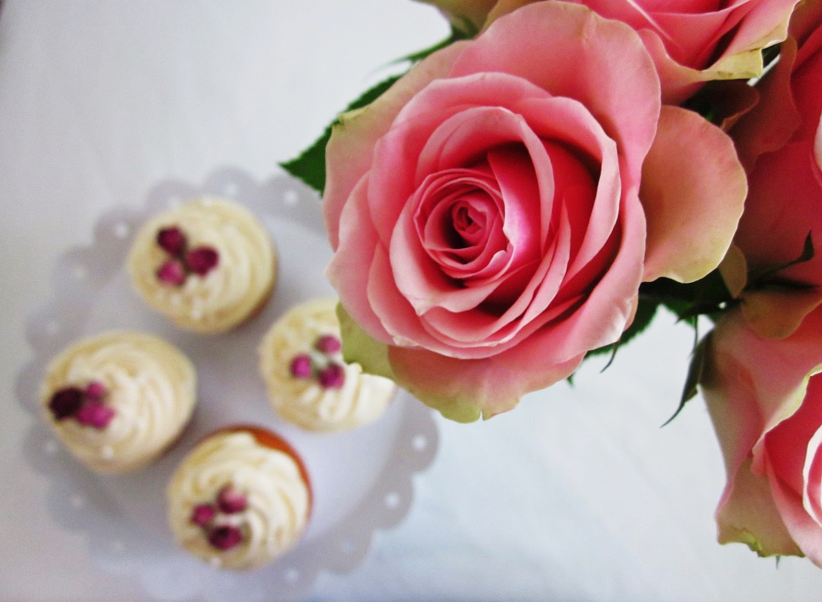 Rose mit Cupcakes