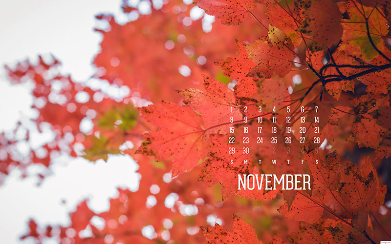 SCRAP & My Favourite Things: 3 Fondos De Pantalla De Noviembre