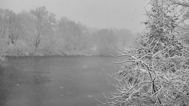 The Lake, Central Park, New York City, NY