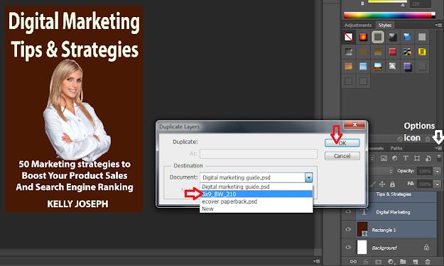 Screenshot: Dduplicate the ebook design layers