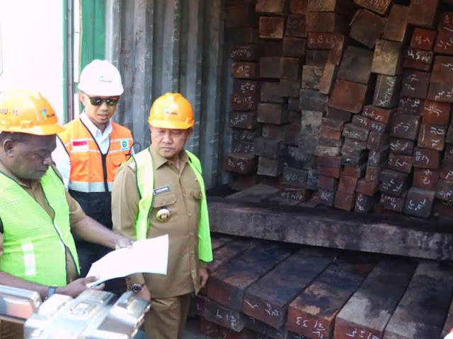 Pemprov Papua Tahan 69 Kontainer Kayu Ilegal di Pelabuhan Jayapura